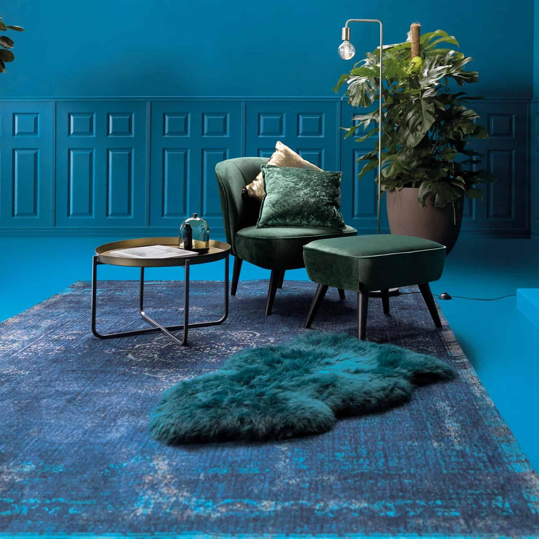 8254_BlueNight_roomshot_WEB